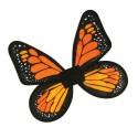 butterfly wings orange black